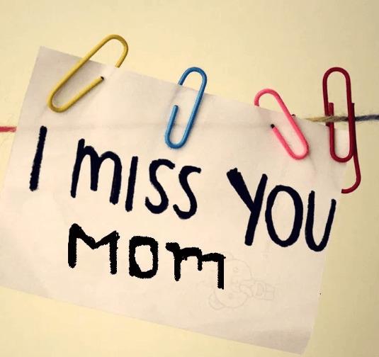 I Miss You Mom Profile Frame