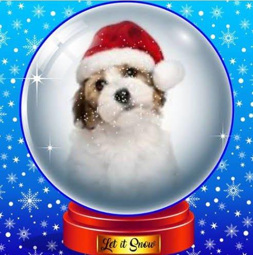 Christmas Snow Globe Profile Frame